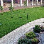 свежий газон